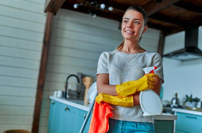 Hushållsnära tjänster